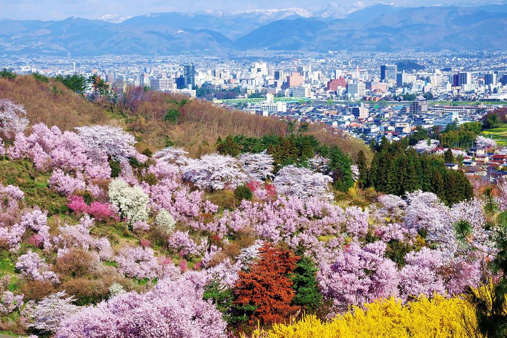 ฟุกุชิมะ fukushima ทัวร์ญี่ปุ่น