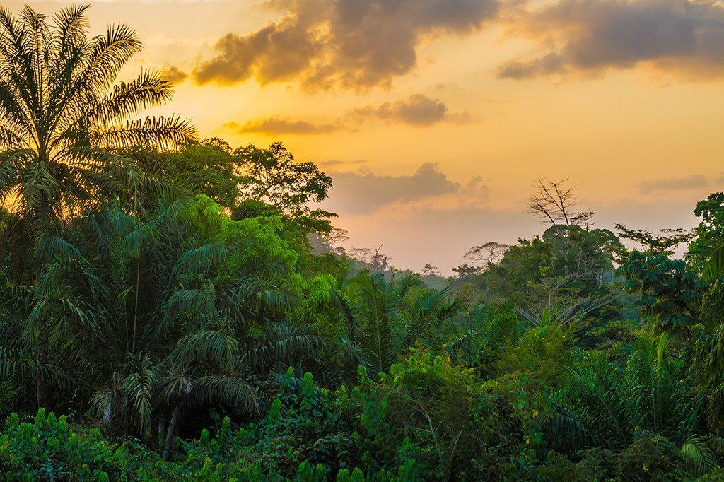 ไลบีเรีย (Liberia) ประเทศน่าเที่ยว 2020 ทัวร์ 2020 เที่ยว 2020